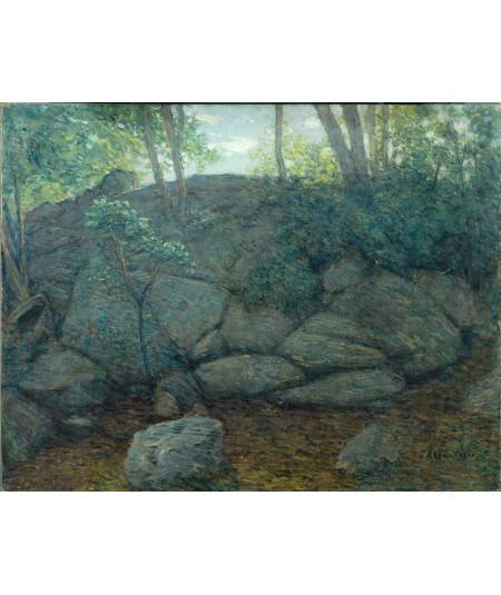 Reprodukcja obrazu Skały leśne